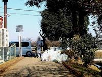 20131117_船橋をきれいにする日_一斉清掃_1101_DSC09599T