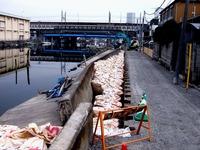 20110402_東日本大震災_船橋市日の出2_堤防破壊_0955_DSC09971