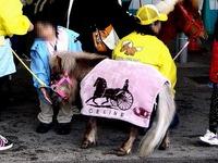20120422_船橋市若松1_船橋競馬場_よさこい祭り_1302_DSC09714T