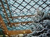 20131218_東京都千代田区_KITTE_クリスマスツリー_1356_DSC05037