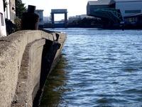 20110326_東日本大震災_船橋市栄町2_堤防破壊_1551_DSC08901