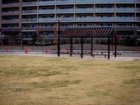 20130323_船橋市北本町1_森のシティ_公園_さくら公園_1543_DSC07444