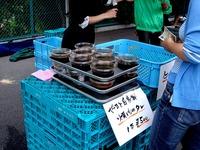 20120623_船橋市夏見1_焼肉やまと駐車場_朝市_0911_DSC00070
