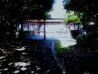 20120819_習志野市秋津5_谷津干潟公園_自然観察_0955_DSC08273
