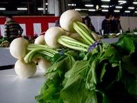 20121111_船橋市市場1_船橋中央卸売市場_農水産祭_1035_DSC01049