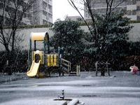 20130114_船橋市_関東地方_低気圧_成人の日_大雪_1141_DSC09746