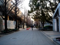 20120314_東京都台東区上野公園5_桜_花見_1710_DSC08321