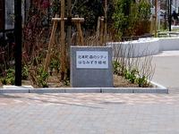 20130414_船橋市北本町1_森のシティ_はなみずき緑地_1039_DSC01328