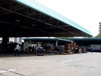 20120602_船橋市市場1_船橋中央卸売市場_ふなばし楽市_0918_DSC06654