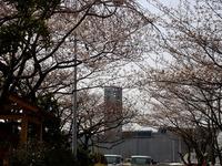 20130323_三井ガーデンホテルズ船橋ららぽーと_0922_DSC06960