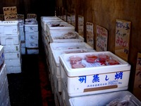 20120303_船橋市市場1_船橋中央卸売市場_ふなばし楽市_0933_DSC06371