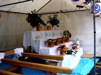 20131006_船橋市海神5_海神地域祭り_演奏会_1104_DSC01706