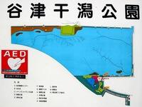 20111112_習志野市秋津5_谷津干潟自然観察センター_0933_DSC00221E