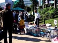 20121027_津田沼公園_楽市フリーマーケット_1337_DSC08012