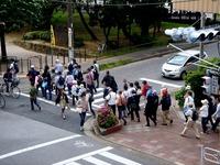 20120512_習志野市谷津_新京成沿線ハイキング_0916_DSC02844