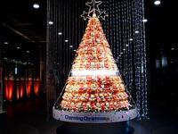 20121220_東京国際フォーラム_クリスマスオブジェ_1926_DSC06642