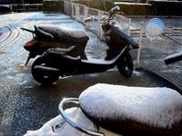 20120124_船橋市浜町2_大雪_積雪_雪_氷_凍る_0737_DSC00495