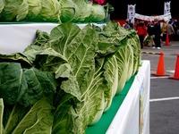 20121111_船橋市市場1_船橋中央卸売市場_農水産祭_1000_DSC00969