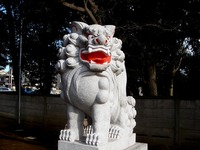 20130103_習志野市大久保4_誉田八幡神社_初詣_1335_DSC09132