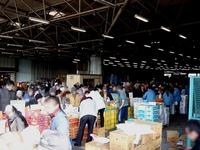 20120303_船橋市市場1_船橋中央卸売市場_ふなばし楽市_0922_DSC06349