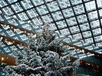 20131218_東京都千代田区_KITTE_クリスマスツリー_1356_DSC05038