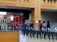 20111223_ビビットスクエア南船橋_新店オープン_1330_DSC00726T