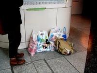 20120329_JR東京駅_東京ディズニーリゾート_春休み_1954_DSC08569