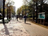 20131103_習志野市_日本大学生産工学部_桜泉祭_1103_DSC06649