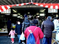 20120303_船橋市市場1_船橋中央卸売市場_ふなばし楽市_0920_DSC06340