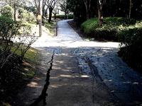 20110313_東日本大震災_海浜香澄公園_地割れ_1201_DSC09683T