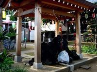 20130630_船橋市東船橋7_茂呂浅間神社_1625_DSC05318