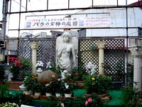 20130615_習志野市_谷津サンプラザ商店街_女神_170942_DSC02529