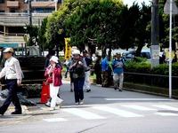 20120512_習志野市谷津_新京成沿線ハイキング_0907_DSC02777