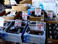 20120303_船橋市市場1_船橋中央卸売市場_ふなばし楽市_0931_DSC06368