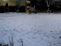 20130114_船橋市_関東地方_低気圧_成人の日_大雪_1656_DSC09800T