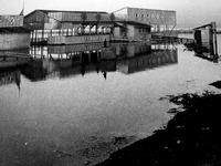 1959年_昭和34年_千葉県_警視庁海の家_062