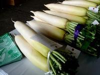 20121111_船橋市市場1_船橋中央卸売市場_農水産祭_1035_DSC01040