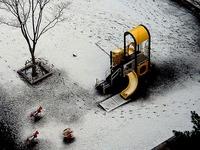 20130128_太平洋側_強い寒気_低気圧_積雪_大雪_1936_DSC00023T
