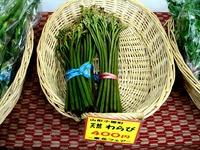 20130530_JR東京駅_山形県応援_特産品_物産展_1904_DSC09898