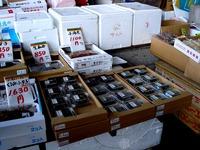 20120303_船橋市市場1_船橋中央卸売市場_ふなばし楽市_0931_DSC06369