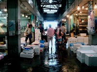 20130601_船橋中央卸売市場_ふなばし楽市_0928_DSC00097