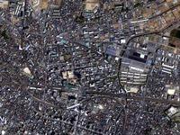 20121201_ふなばし楽市_船橋市中央卸売市場_310