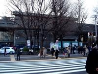 20120314_東京都台東区上野公園5_桜_花見_1712_DSC08327