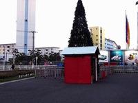 20131130_船橋市浜町2_IKEA船橋_クリスマスツリー_1633_DSC00325