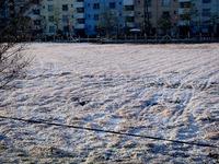 20120124_船橋市浜町2_大雪_積雪_雪_氷_凍る_0746_DSC00514