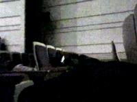 20130119_船橋市市民文化ホール_避難訓練コンサート_1058_1112