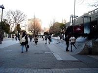 20120314_東京都台東区上野公園5_桜_花見_1710_DSC08322