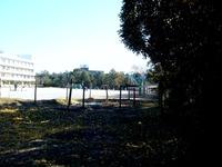 20121208_船橋市立_若松小学校_津波一時避難施設_1112_DSC05439