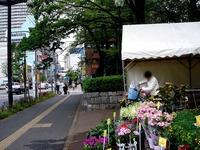20130420_船橋市本町7_第75回緑と花のジャンボ市_0952_DSC02055