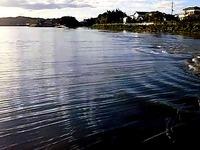 20131103_台風第26号_千葉県茂原市_一宮川が氾濫_堤防_050